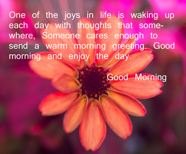 Good morning quote good morning quote wallpapers good morning good morning quote free download m4hsunfo